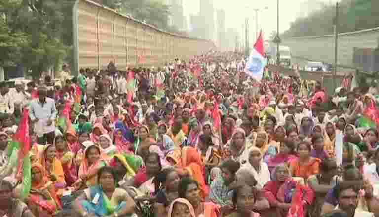德里的农民抗议:这是专家要说的
